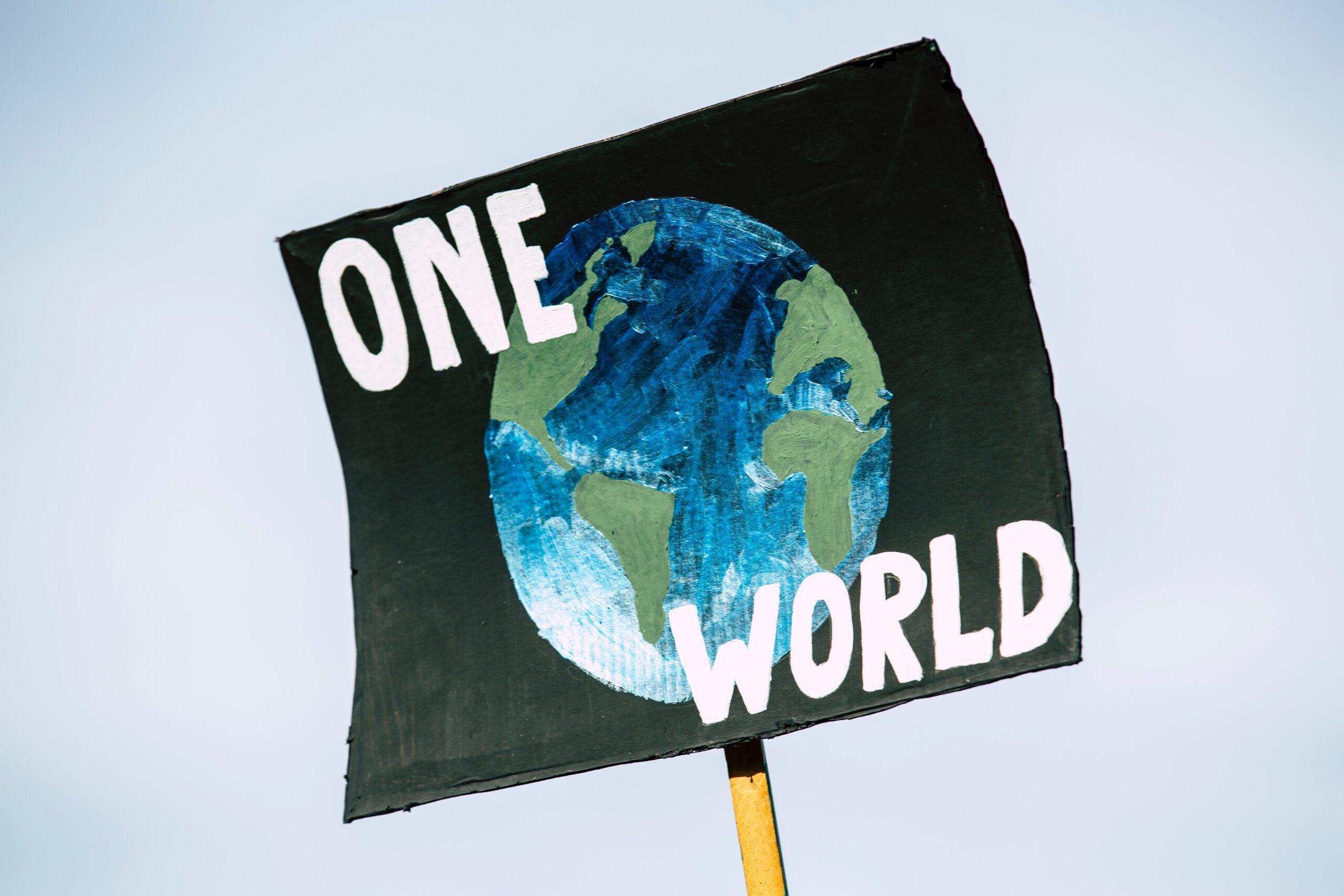 UN drafts Paris-style plan to halt biodiversity loss